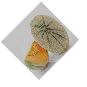 Melon charentaise Bio d'Alsace
