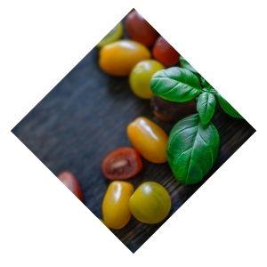 Tomate Cerise multicolores Bio d'Alsace