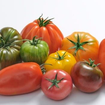 Tomates Bio d'Alsace