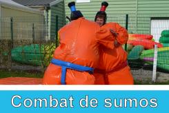 sumo2_port2