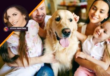 mascota familia
