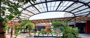 model teras rumah sederhana dengan desain atap transparan