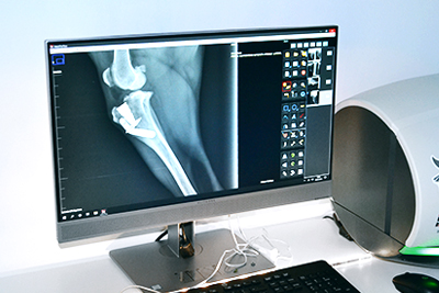 Radiologia digital veterinaria