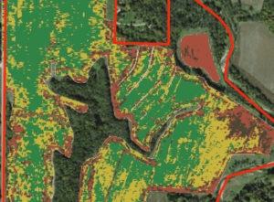 Yield monitor maps reveal less profitable areas to convert to native ecosystems.