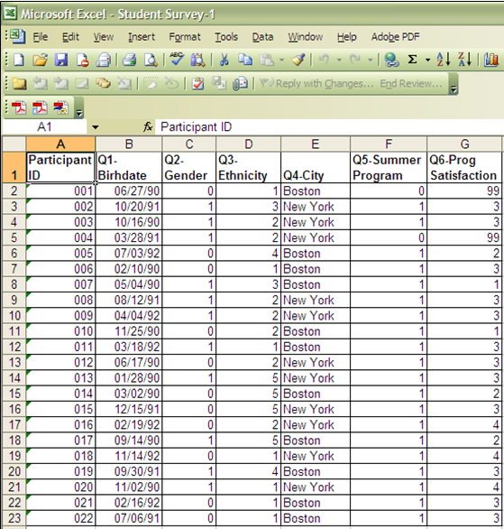 survey report format in excel sample