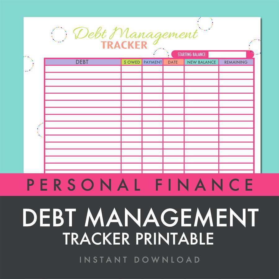 Debt Management Sheet and Debt Reduction Budget Spreadsheet