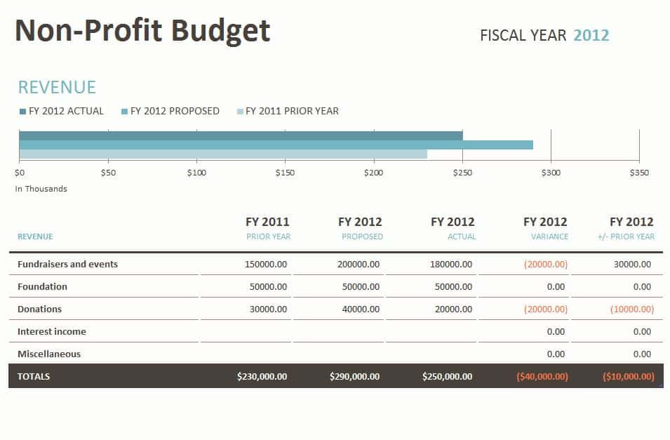 Financial Statement Template For Non Profit Organization And Non Profit Financial Statement Template Excel