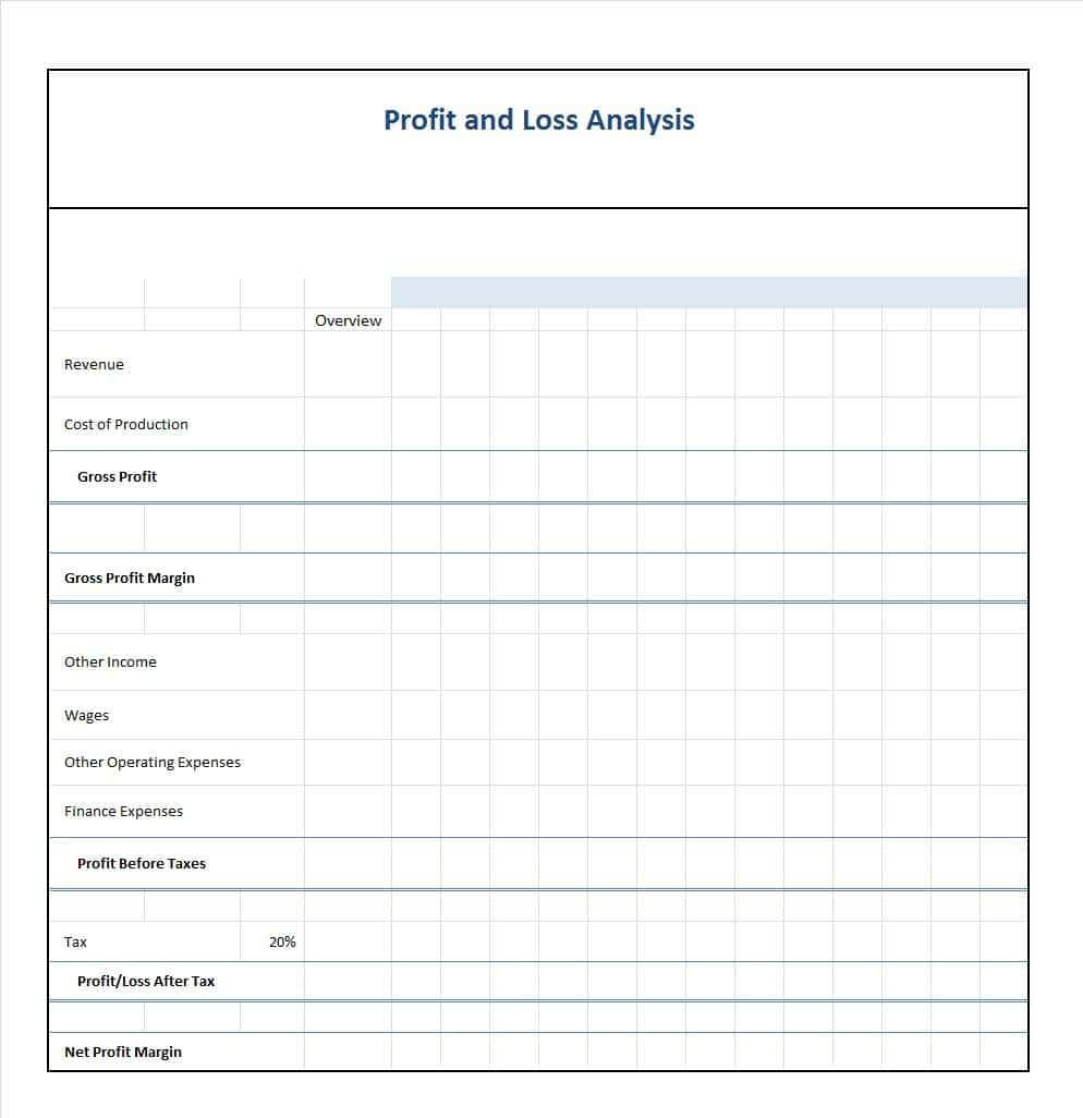 Sample Form Of Profit And Loss Statement And Profit And Loss Statement Template Excel