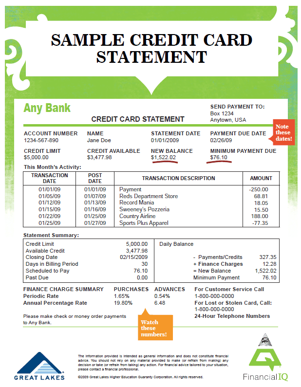 Credit Card Statement Template Word And Chase Credit Card Statement Template
