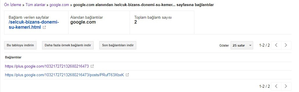 Google Plus Backlink Elde Etme