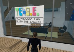 te4be in Second Life