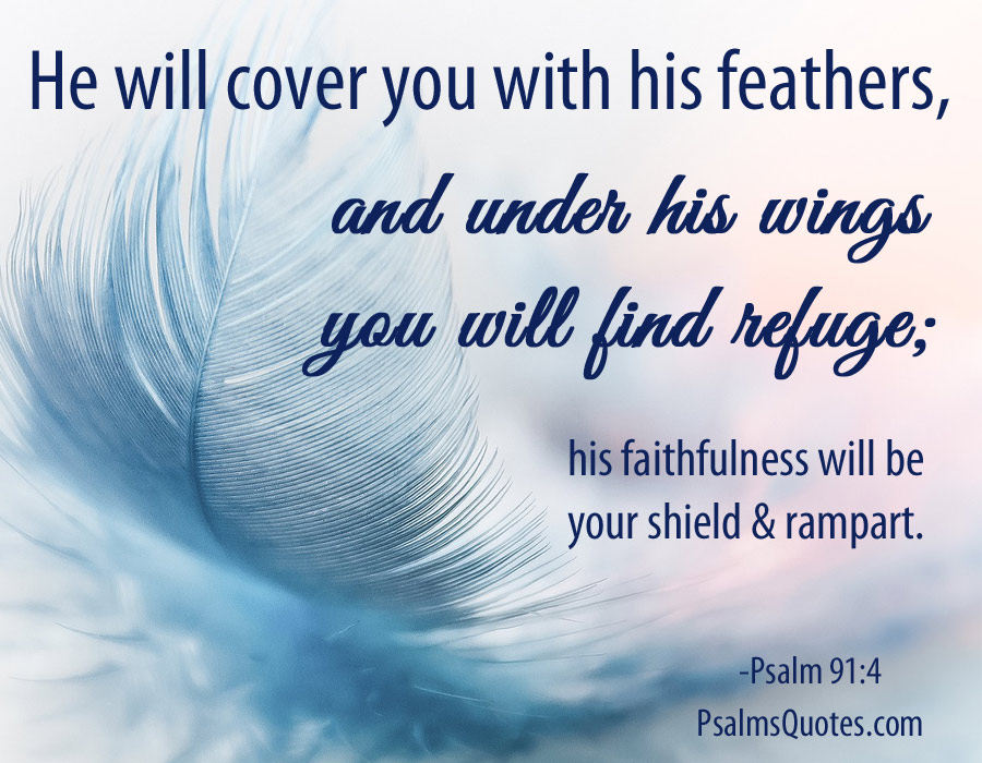 Image result for psalm 91:4