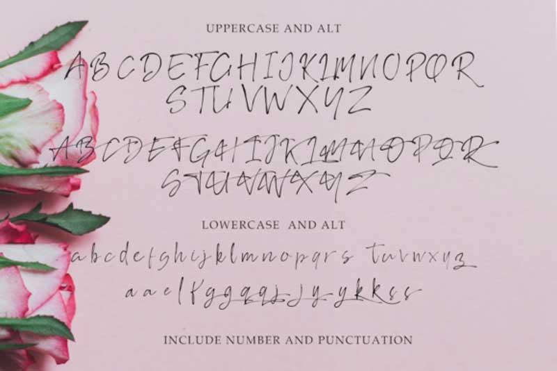 Creativefabrica - Rosseate Script Font