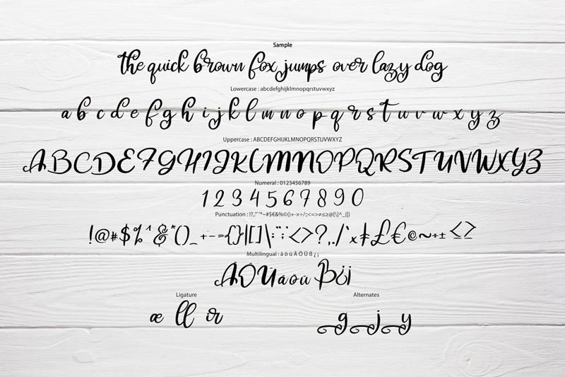 hibes-soft-script-font