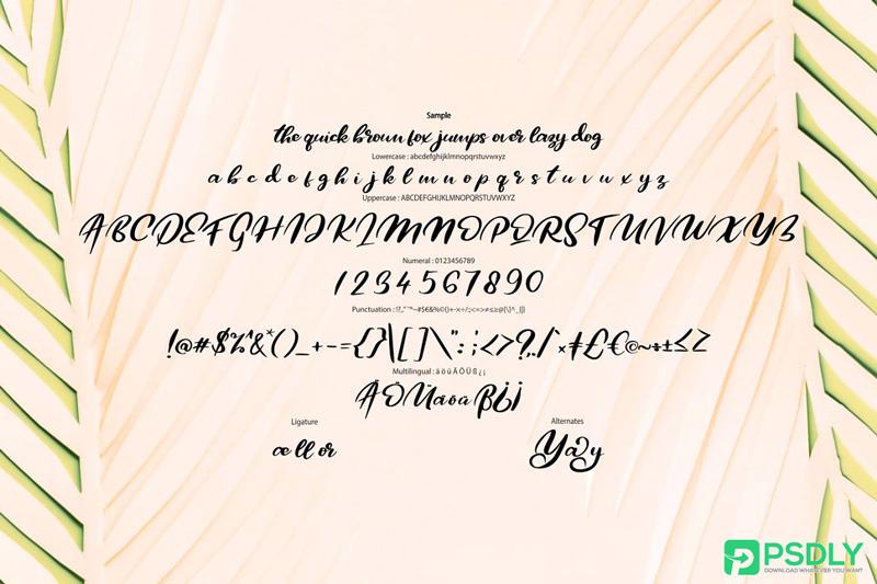 Qors-Minimalism-Script-Font