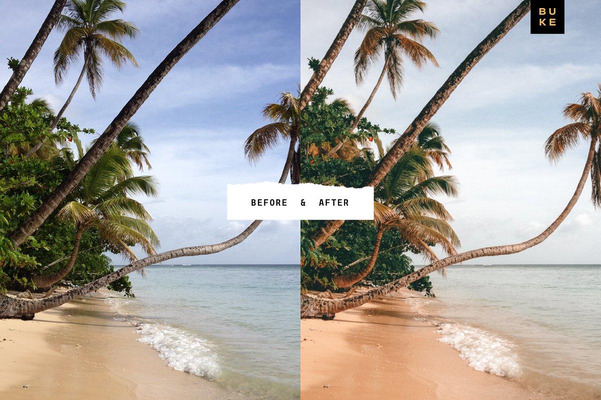 cover 02 copy