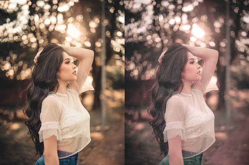 10 Lightroom CC Presets Bloom 4581788 Free Now