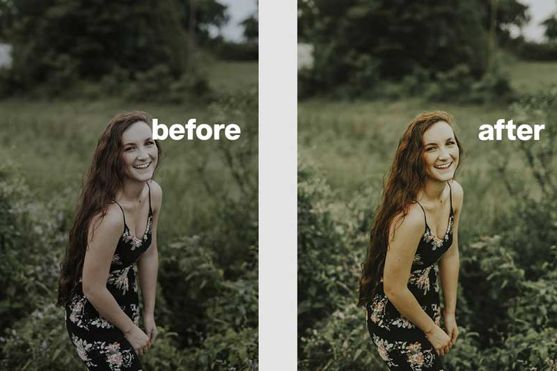 AVOCADO Lightroom Presets 4619013 Psdly