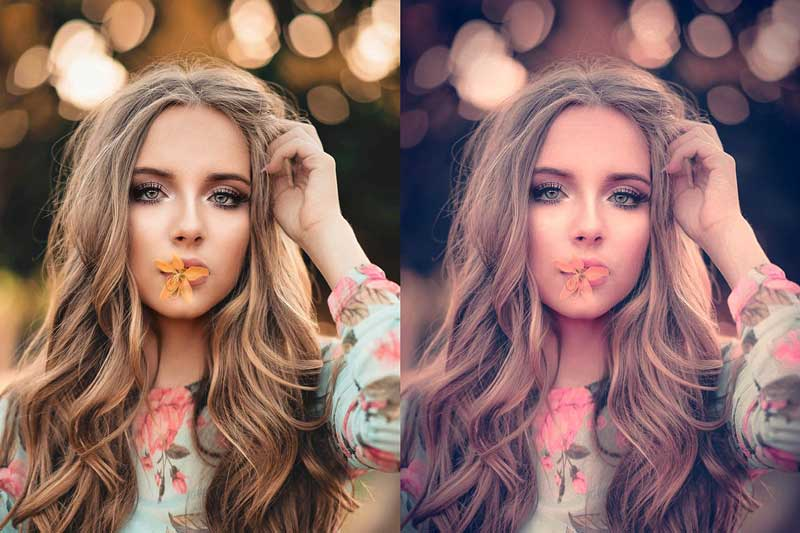 Creativemarket 10 Lightroom CC Presets Bloom 4581788