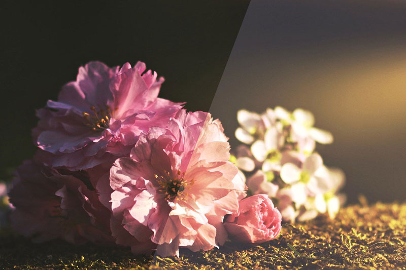 40 Modern Photoshop Actions 7