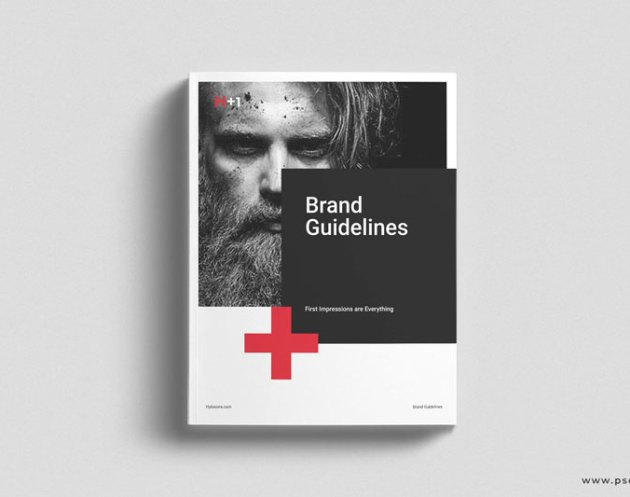 Brand Guidelines 4683253
