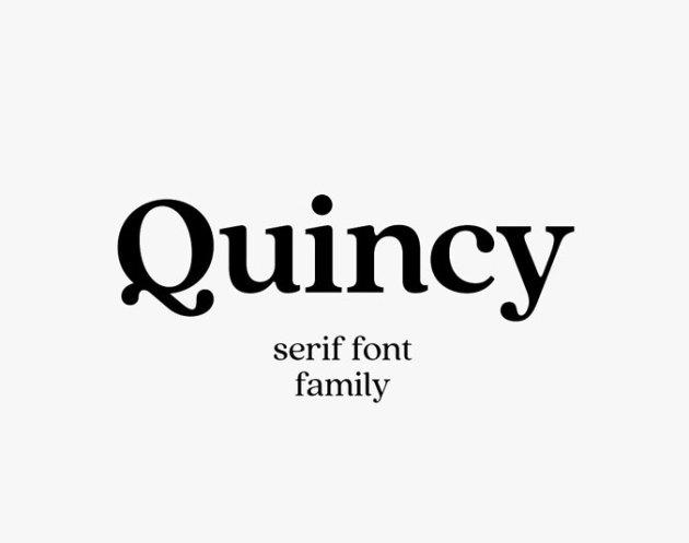 Quincy C Vintage Serif Font Family