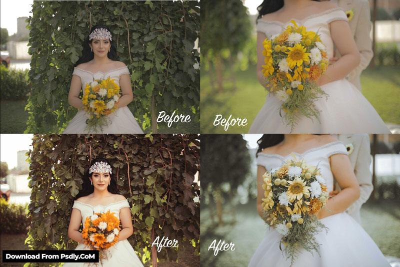 CREATIVEMARKET - WEDDING PRESET PACK 4803526