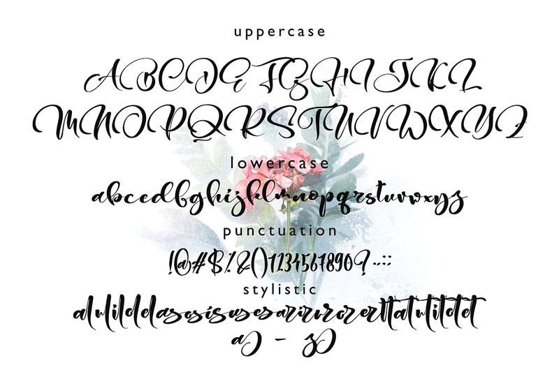 Gesttrak Stunning Script Fonts