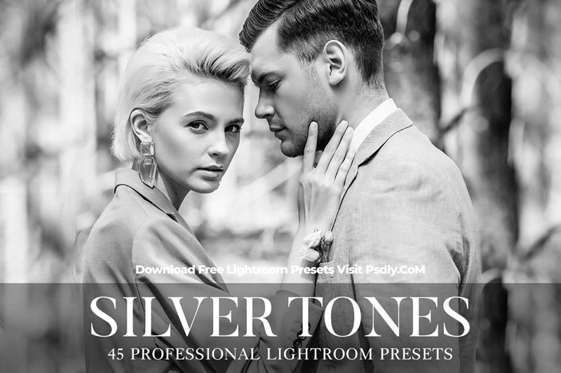 Silver Tones Presets Lightroom 4802232