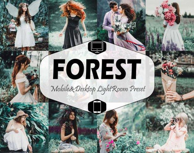 Forest Mobile & Desktop Lightroom Presets