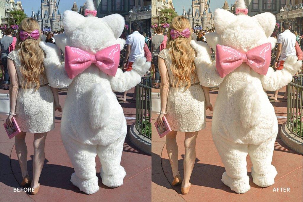 Lightroom Preset Disneyland Princess 4973030