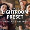 Vogue Lightroom Preset 4900514