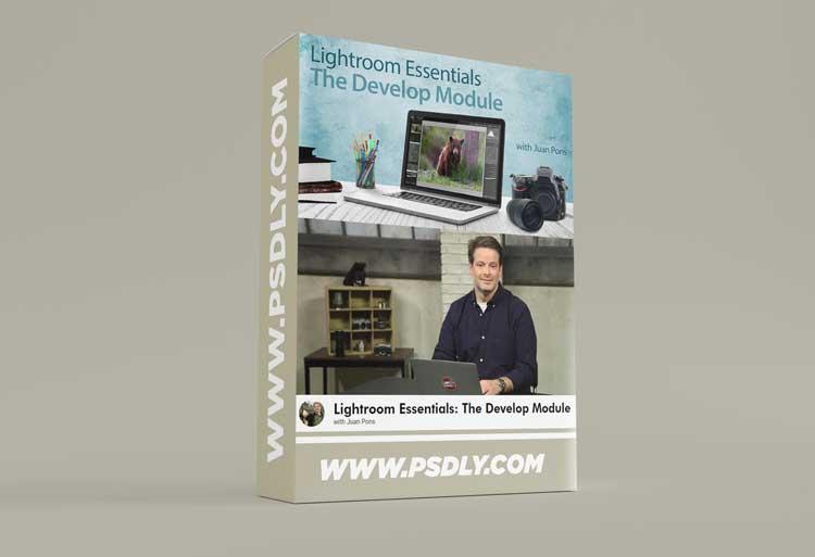 Lightroom Essentials: The Develop Module