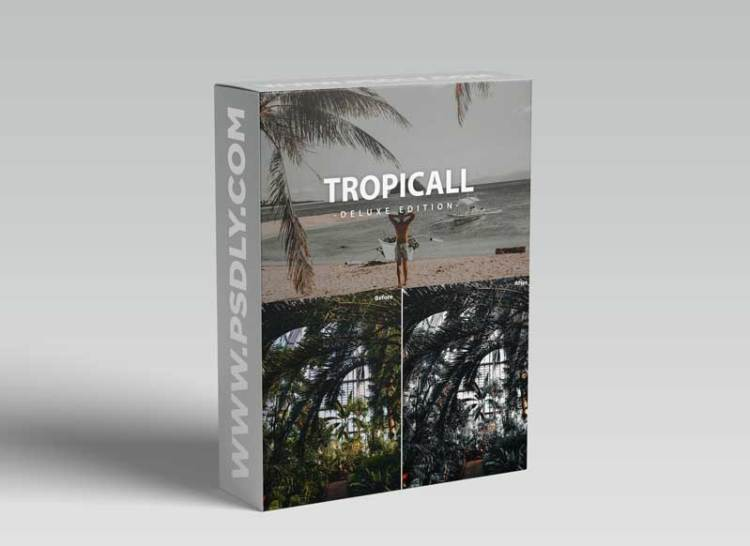 Tropicall Deluxe Edition   For Mobile and Desktop