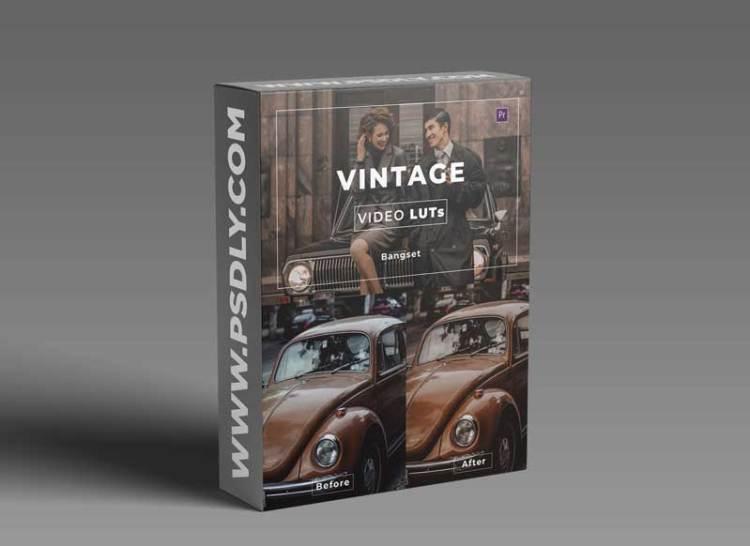 Bangset Vintage Video LUTs