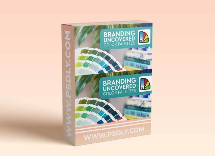 Branding Uncovered: Color Palettes - The Power of the Perfect Palette