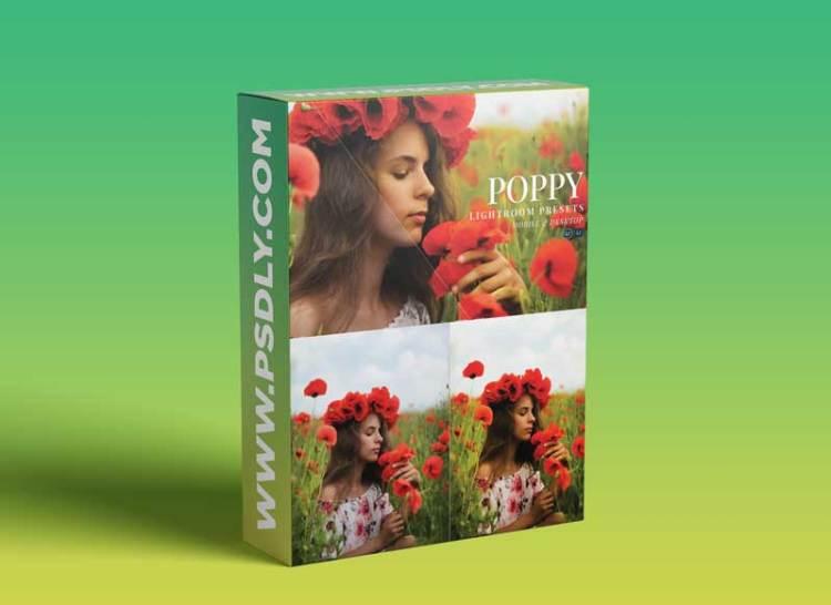 Poppy Mobile and Desktop Lightroom Presets