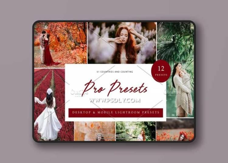 CreativeMarket - 12x Lightroom Presets, Pro Presets 6071347
