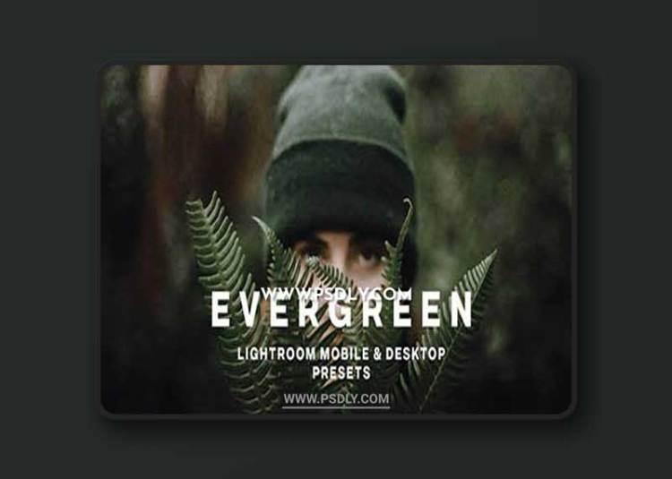 CreativeMarket - EVERGREEN LIGHTROOM PRESETS 5756318 LIGHTROOM