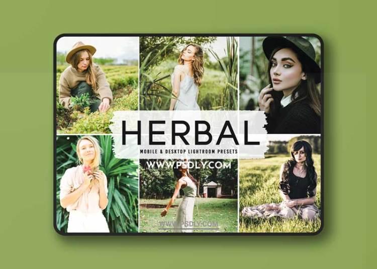 CreativeMarket - Herbal Pro Lightroom Presets 6283941