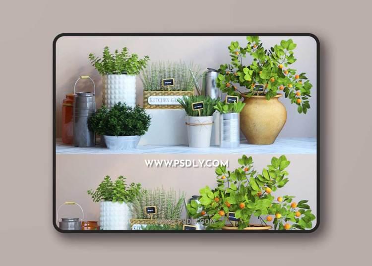 Kitchen Garden 4 3D Model