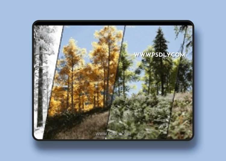 PLE - Procedural Landscape Ecosystem 4.27