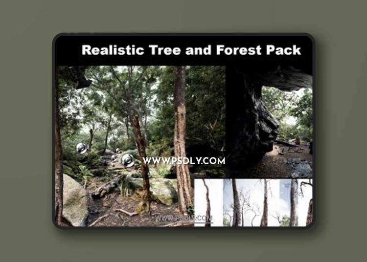 Trees: Realistic Forest Plants Pack 3D Models