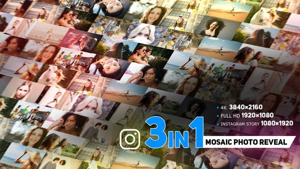 eohive Modern Mosaic Photo Reveal 33909099