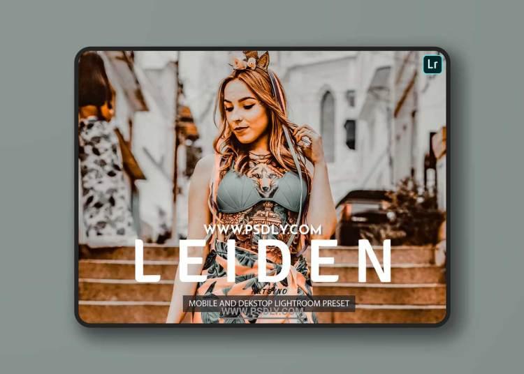 Leiden Lightroom Presets Dekstop and Mobile