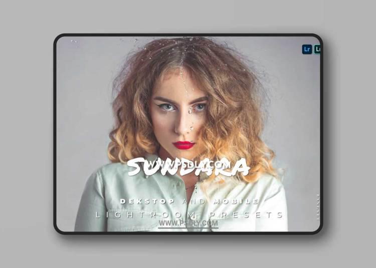 Sundara Desktop and Mobile Lightroom Preset