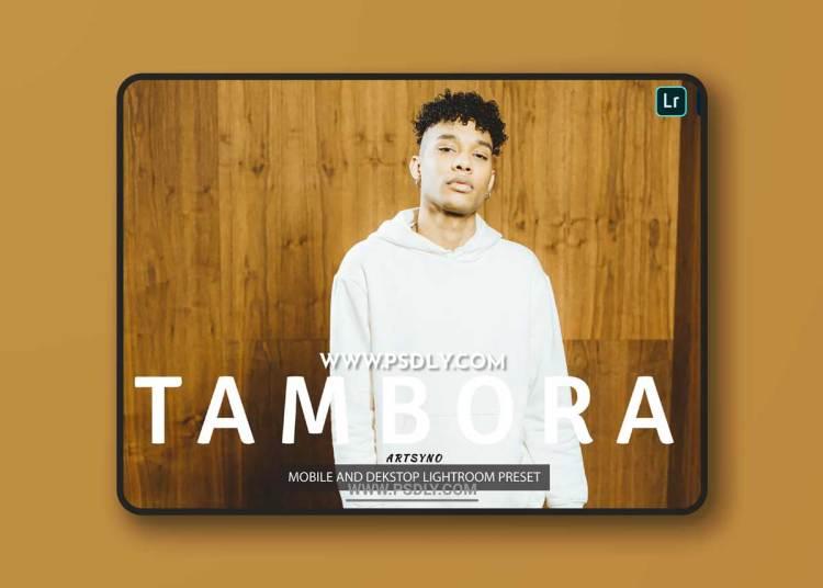 Tambora Lightroom Presets Dekstop and Mobile