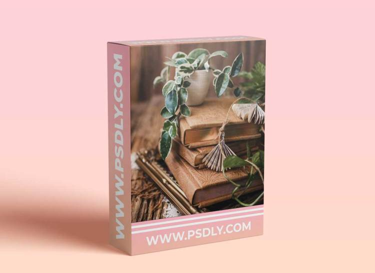 Twig & Olive Photography - Digital Hybrid Model