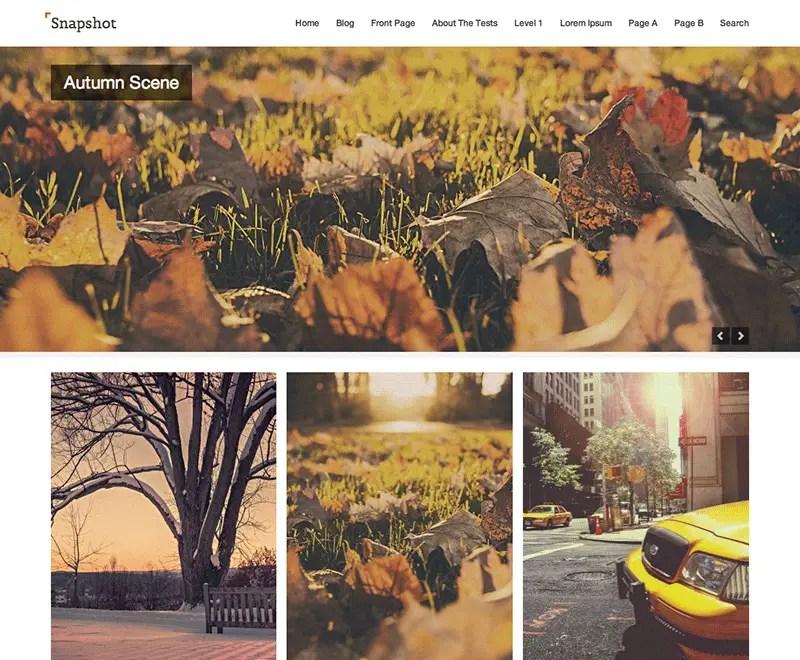 Snapshot WordPress Photography Theme