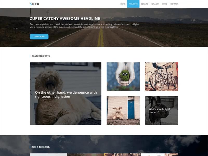 Zifer Child WordPress Photography Theme